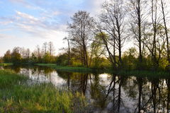 река малое стоковая фотография rf