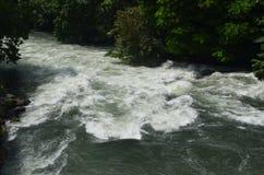 Река Марии Кристины Стоковые Фото