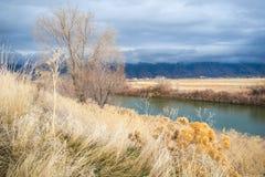 Река медведя во время шторма осени стоковое изображение rf