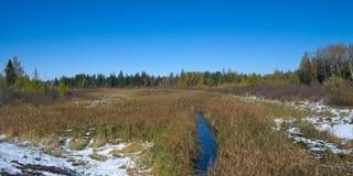 Река Миссисипи на одной миле от источника, озеро Itasca стоковые фотографии rf