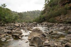 Река Митчела в Gippsland, Виктории, Австралии Стоковые Фотографии RF