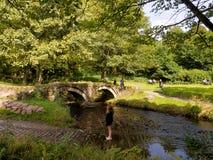 река моста старое излишек Стоковое Фото