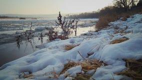 Река Молдавия Стоковые Изображения