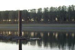Река Молдова Dnistro Стоковые Изображения RF