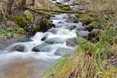 Река молокозавода Стоковые Фото