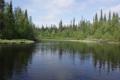 Река на летний день Стоковая Фотография