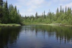 Река на летний день Стоковые Изображения