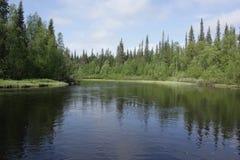 Река на летний день Стоковое Изображение RF