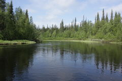 Река на летний день Стоковые Фото