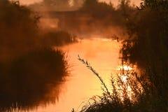 Река на зоре Стоковое Изображение RF