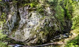 Река на прикарпатских горах Стоковое Изображение