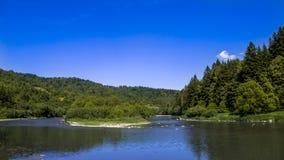 Река на прикарпатском лесе Стоковая Фотография