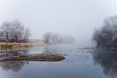 Река на утре падения туманном Стоковое Фото