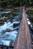 Река на Yosemite Стоковые Изображения RF
