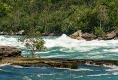 Река Ниагара на прогулке белой воды в Канаде Стоковые Фотографии RF