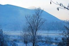 Река обернутое в заморозке Стоковая Фотография RF