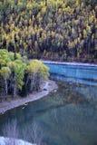 Река около леса Стоковое Изображение