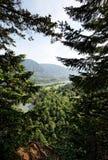 река Орегона pacific gorge columbia северо-западное Стоковые Фотографии RF