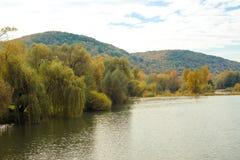 Река осени и красочные деревья около воды Стоковые Изображения