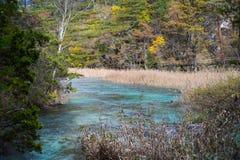 Река осени с алоэ Jiuzhaigou, фарфором Стоковое Изображение
