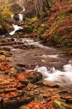 Река осени с листьями Стоковые Фото