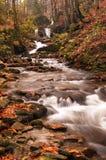Река осени с листьями Стоковое Изображение