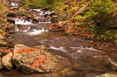 Река осени с листьями Стоковое фото RF
