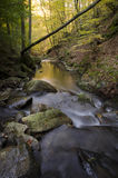 Река осени с утесами и речными порогами в осени Стоковые Изображения RF