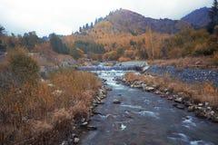 Река осени Стоковое Фото