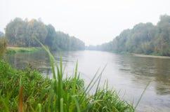 Река осени Стоковые Изображения