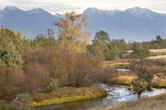 река отражений гор падения цветов montan Стоковое Фото