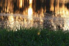 Река отражения и дерево тени в заходе солнца воды красивом nat Стоковая Фотография RF