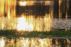 Река отражения и дерево тени в заходе солнца воды красивом nat Стоковое Изображение
