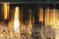 Река отражения и дерево тени в заходе солнца воды красивом nat Стоковые Фотографии RF