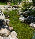 река отражения Стоковые Изображения
