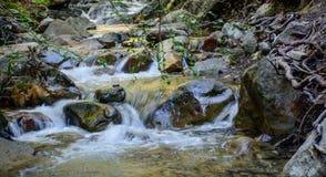 Река долгой выдержки и зеленый камень мха в лесе Стоковые Изображения RF