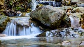 Река долгой выдержки и зеленый камень мха в лесе Стоковые Изображения