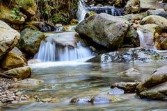 Река долгой выдержки и зеленый камень мха в лесе Стоковые Фотографии RF