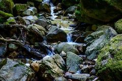 Река долгой выдержки и зеленый камень мха в лесе Стоковое фото RF