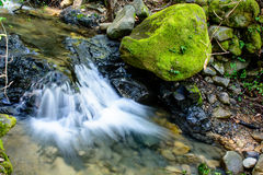 Река долгой выдержки и зеленый камень мха в лесе Стоковые Фото