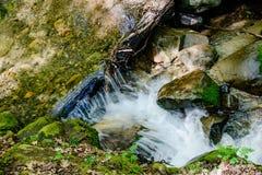 Река долгой выдержки и зеленый камень мха в лесе Стоковое Фото