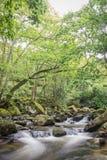 Река долгой выдержки Стоковое фото RF