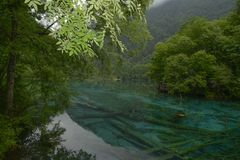 Река павлина Jiuzhaigou Стоковая Фотография RF