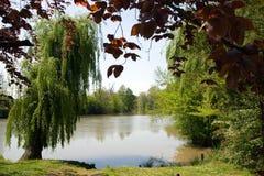 река парка видит к Стоковое Изображение RF