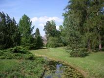 Река парка лета Стоковые Изображения RF