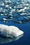 река перемещаясь льда Стоковая Фотография