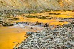 река пива Стоковая Фотография