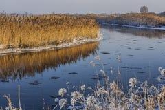 Река покрашенное осенью Стоковое Изображение RF