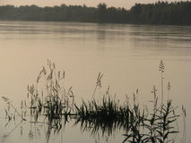 Река после захода солнца Стоковые Фото