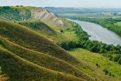 Река потока пропускает на зеленом участке земли Стоковое Изображение